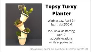 Take & Make Craft - Topsy Turvy Planter