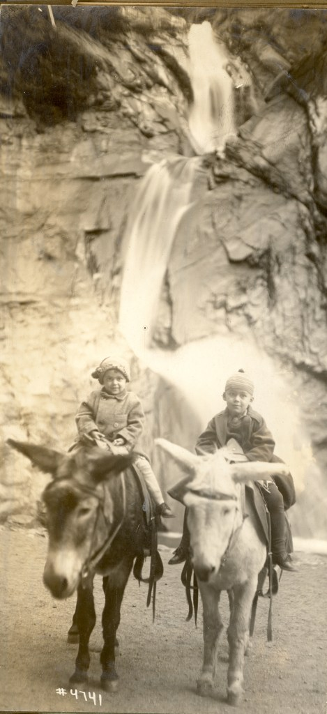 Unknown children on the trail with donkeys, probably in Colorado circa 1920.