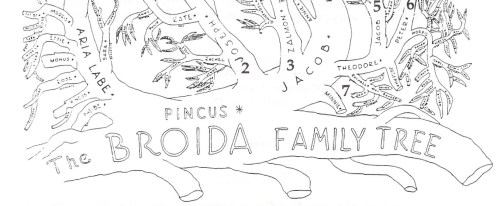 1954 Broida Family Tree by Leonard Broida- The deep roots- Pincus Broida.