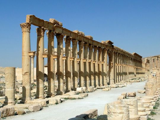 Palmyra; By Bernard Gagnon (Own work) [GFDL (http://www.gnu.org/copyleft/fdl.html) or CC BY-SA 4.0-3.0-2.5-2.0-1.0 (http://creativecommons.org/licenses/by-sa/4.0-3.0-2.5-2.0-1.0)], via Wikimedia Commons
