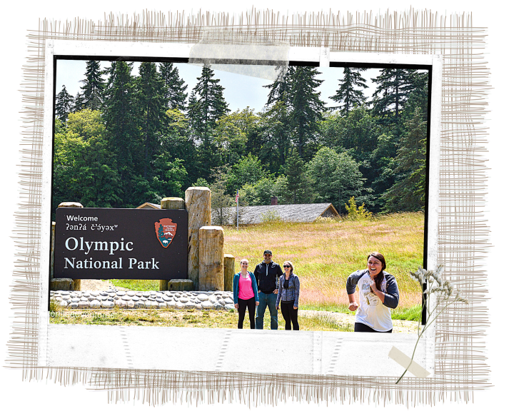 3 day itinerary for Olympic National Park will provide you all the details you need to know for your weekend getaway! Olympic National Park is located in the state of Washington's Olympic Peninsula in the United States.