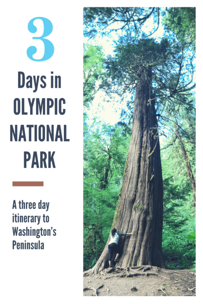 3 Days in Olympic National Park