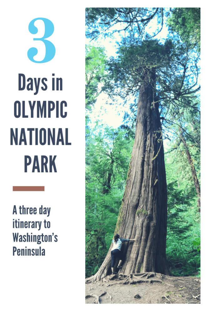 3 Day Itinerary for Olympic National Park