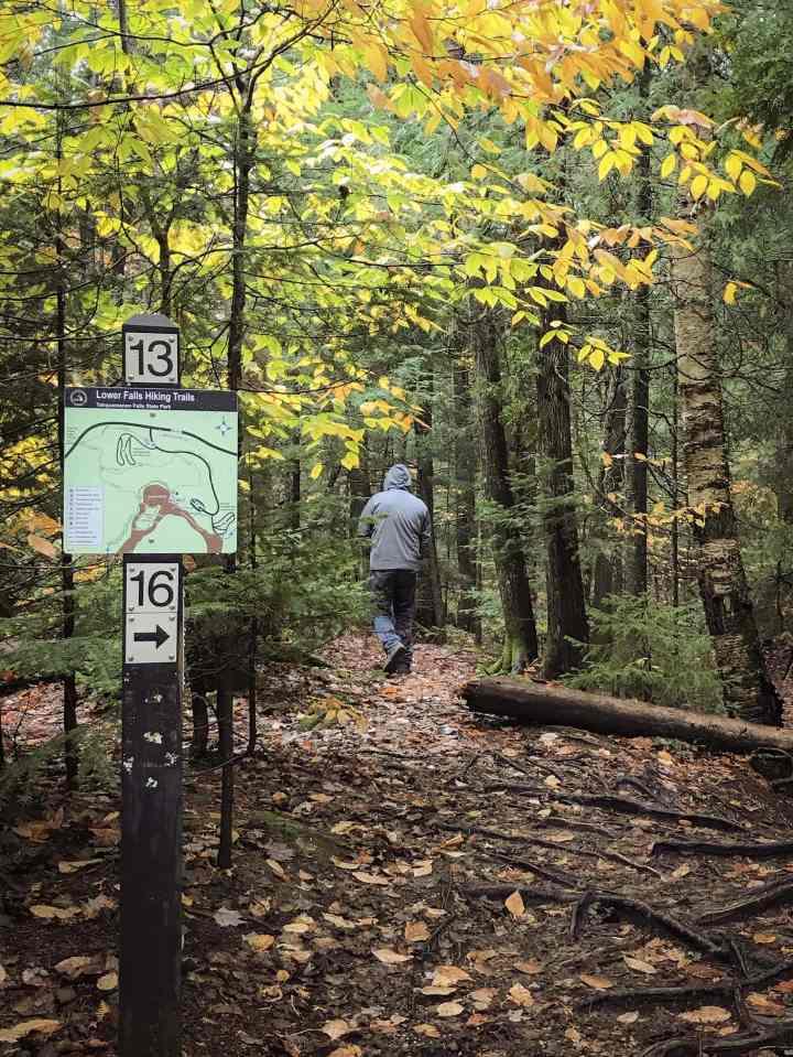 Lower Falls Hiking Trail in Tahquamenon Falls State Park