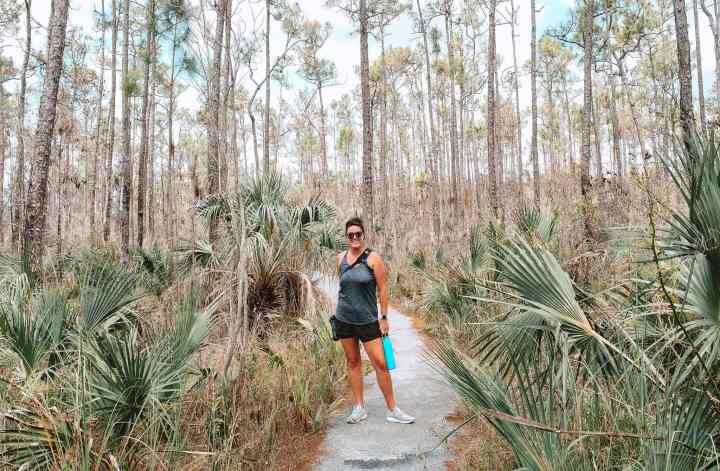 This hiking guide to Everglades National Park will explore hiking trails for beginner, paddle water trails, long hikes through the various landscapes of the park. #everglades #nationalpark #adventure #guide #itinerary #thingstodo #hike #hikingtrails