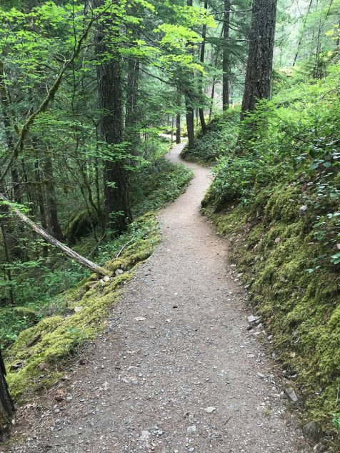North Cascades Hiking and Camping Trails | HerLifeAdventures.Blog | #traveldestinations #northcascadeshighway #northamericatravel #hiking #camping #usdestinations #travelhacks #travelguide #adventuretravel #roadtrip #nationalpark #nationalparkroadtrip #northcascades #washington