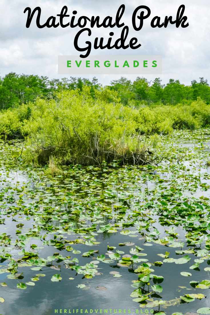 Adventure Guide to Everglades National Park. Explore the diverse eco systems while hiking through the various landscapes. #Everglades #nationalpark #hiking #itinerary #guide #whattodo