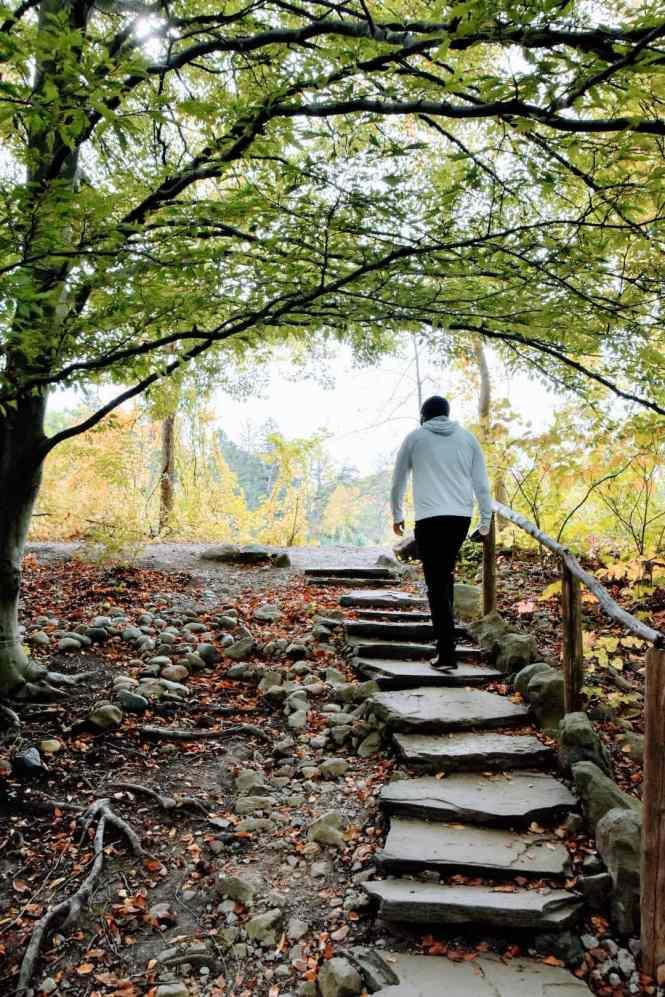 Top Hiking trails Kingswood Lake Trail Cranbrook Botanical Gardens