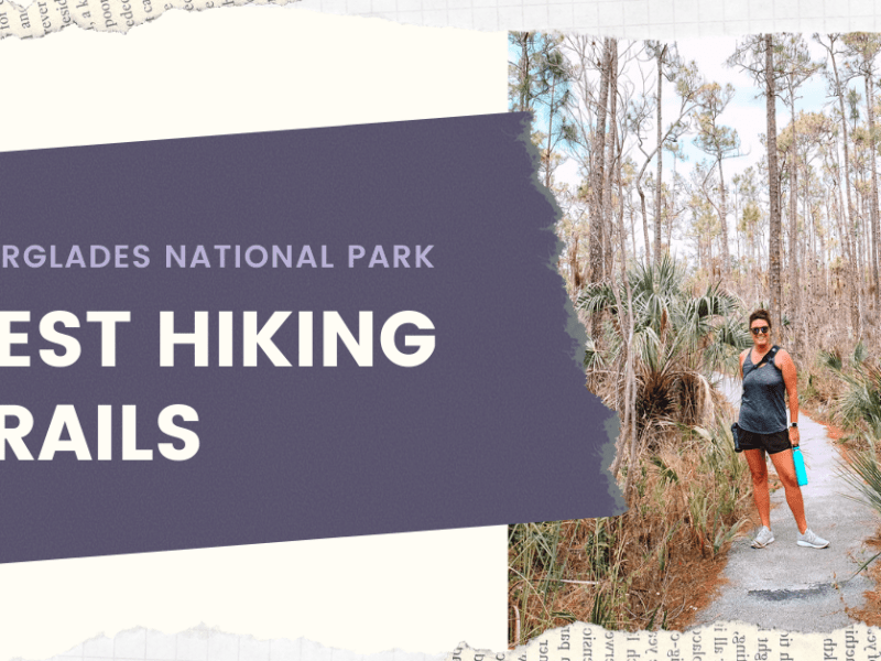 Best Hiking Trails in Everglades National Park