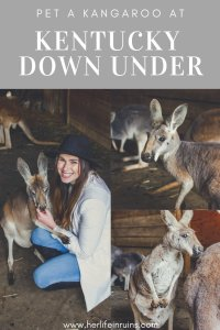 Her Life in Ruins | An Adventure at Kentucky Down Under
