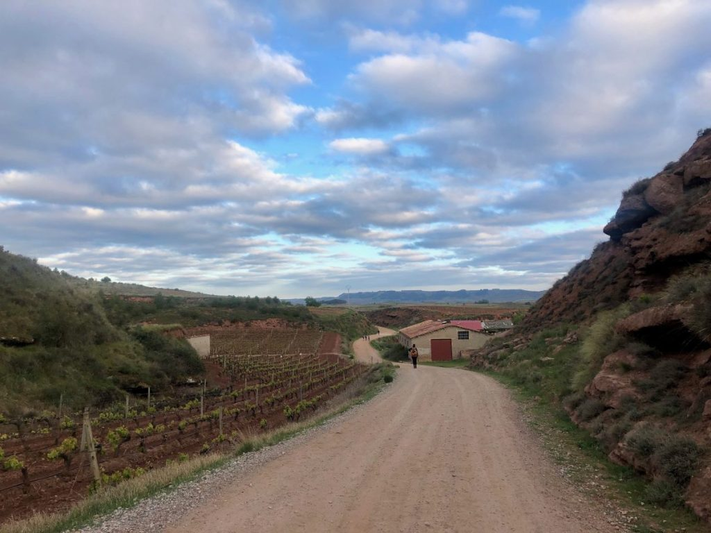 Walking through La Rioja on the Camino after sunrise | Her Life in Ruins
