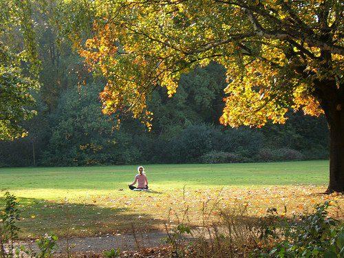 meditacion en la naturaleza ¿Qué es meditar y cómo hacerlo? La primera y última libertad