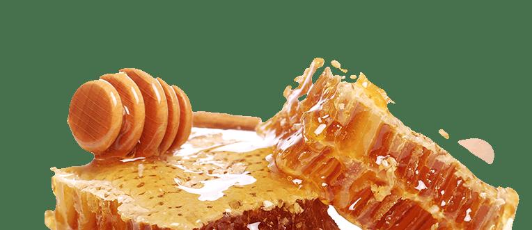 Organic and Handmade Honey