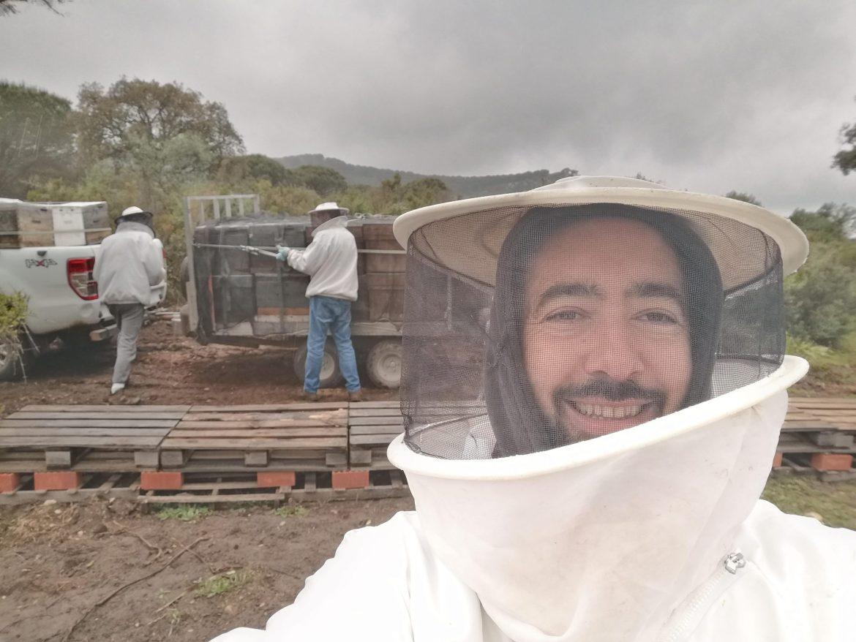 Best Honey in Spain