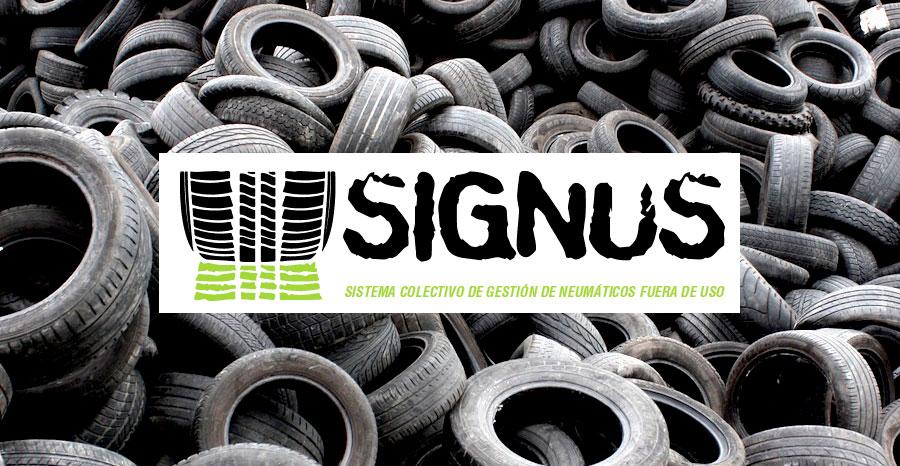 Punto SIGNUS, compromiso con el medio ambiente