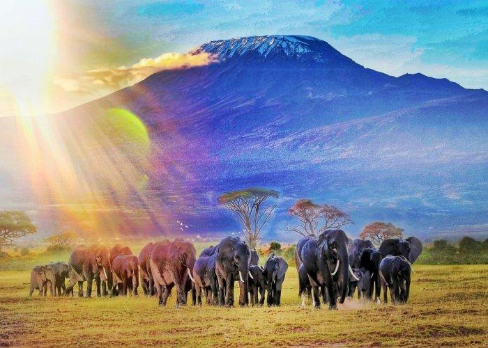 Amboseli, ceļojums uz keniju, тур в кению