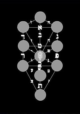 saadia-tree.jpg