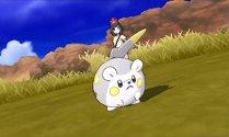 Pokemon Sun Moon Togedemaru