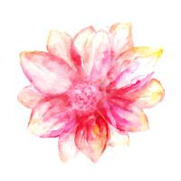 blossom-a