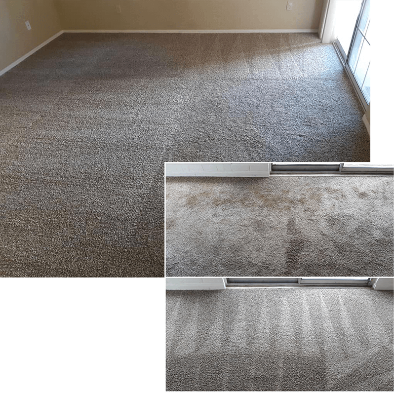 1 for carpet cleaning in tucson 2