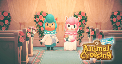 Animal Crossing New Horizons Mehr Kunst mehr Natur