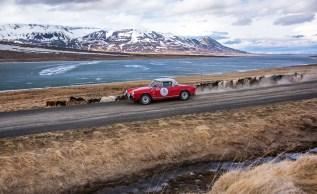 Icelandic_saga-2015-2200px11