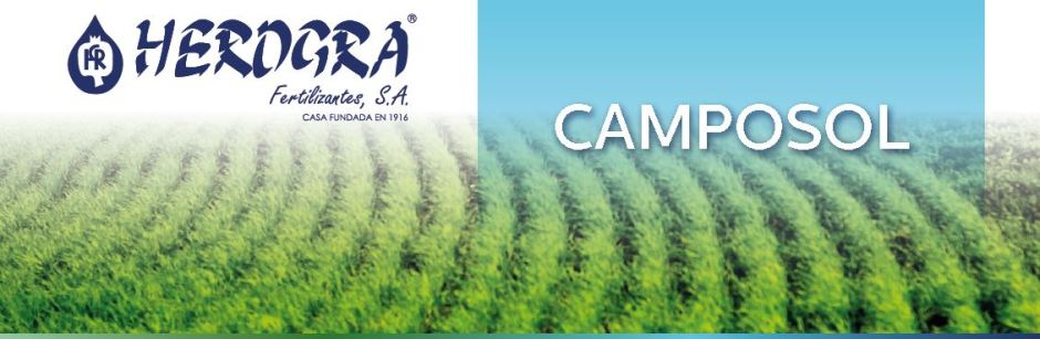 Cabecera Camposol