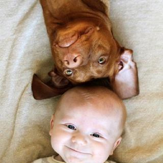 Cute Baby and Puppy