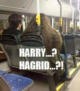 harry e hagrid real