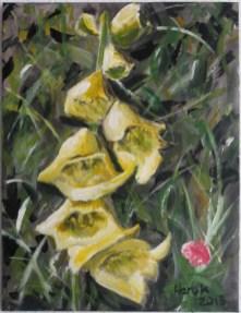 Gelber Fingerhut
