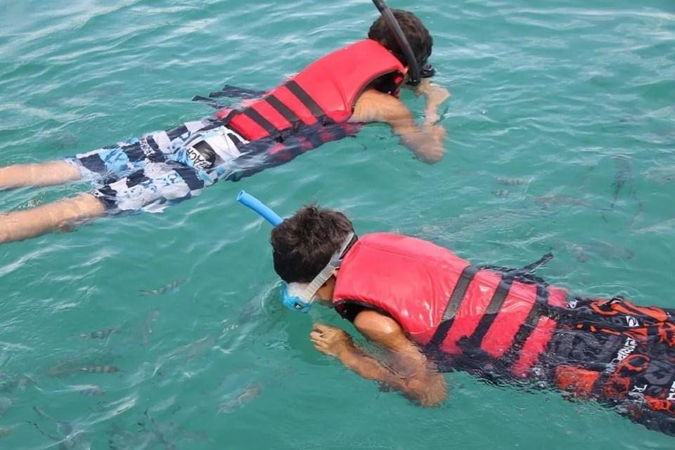 Le snorkeling au coeur de la faune aquatique