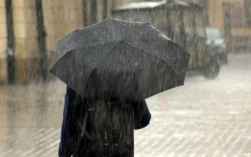 parapluie homme pliable noir, un pébroc classique