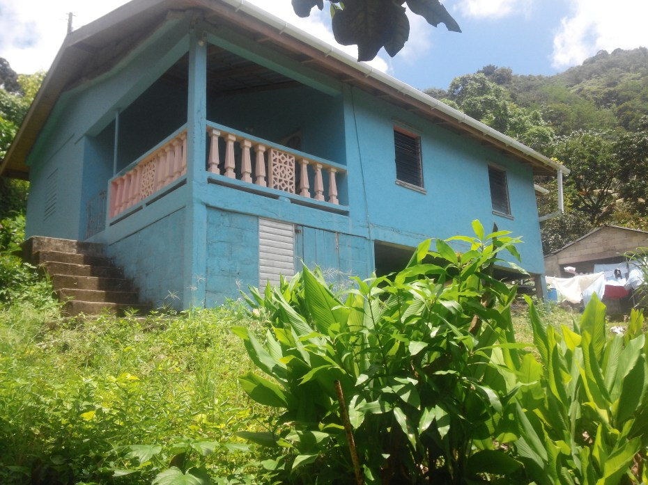 Uriahs Victor's childhood home, a blue house with low jungle around it