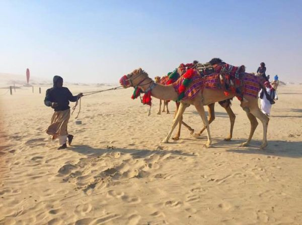 Image result for qatar female traveler