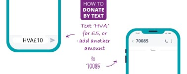 Donate by text - what your phone will show.