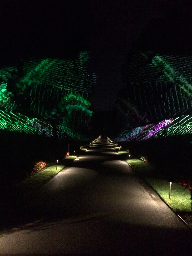 Longwood Gardens lit night