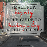 Your Guide to Having a Dog in Philadelphia