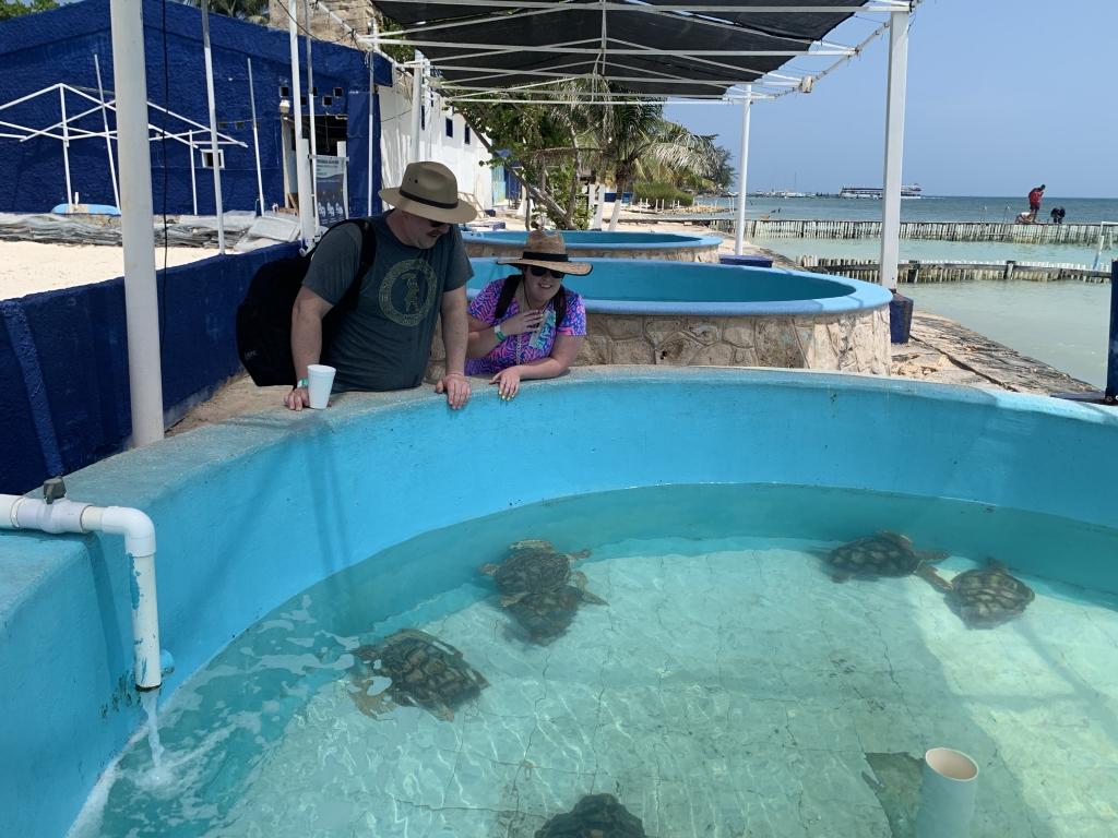 Isla Mujeres Turtle Sanctuary