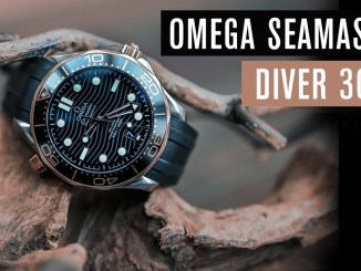 Omega Seamaster Diver 300 Evo- oder Revolution? | Test | Review