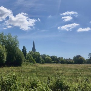 vVew over the water meadows to Salisbury cathedral