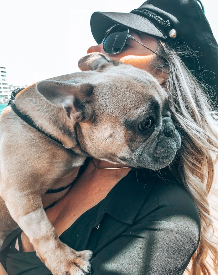 EASY ERRANDS TO RUN WITH YOUR DOG • HER SALTY KISSES