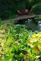 Lush planting edges the pond