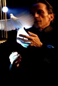 La magie des colombes