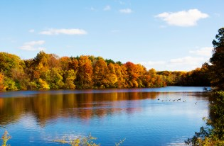 Fall at Shaker Lakes