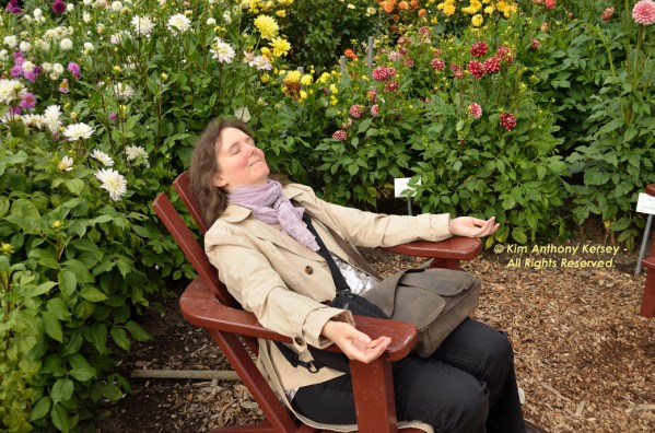 #WWWP5k 2016 Steffi Relaxing at #DahliaGardenHamburg © Kim Anthony Kersey - All Rights Reserved. #KKPhotography #Herzensreise #StefanieNeumannKokopelliBeeFree