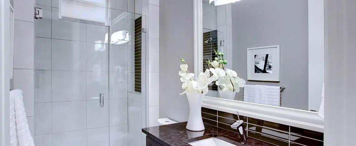 Frameless-Door-and-Panel.-Custom-Mirror