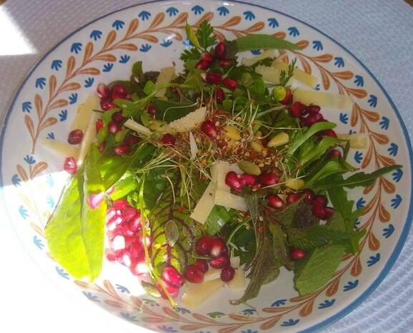 Weinproben in Hessigheim Bed & Wine Wein und Essen Salat