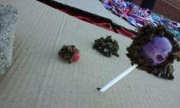 Bees enjoying the sweet offerings at the street vendor stalls – Port Shepstone Regional Hospital