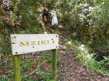 Begin van die Mziki wandelpaadjie
