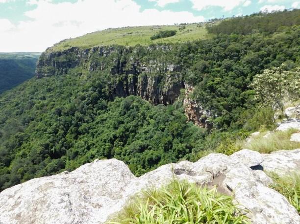 Die beboste gedeelte waardeur ons sou moes loop tot onder in die kom (ongeveer 300 meter laer af)